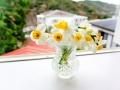 6窓辺の花